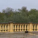 Villa Piccolomini - Monteriggioni(SI) fraz. Uopini